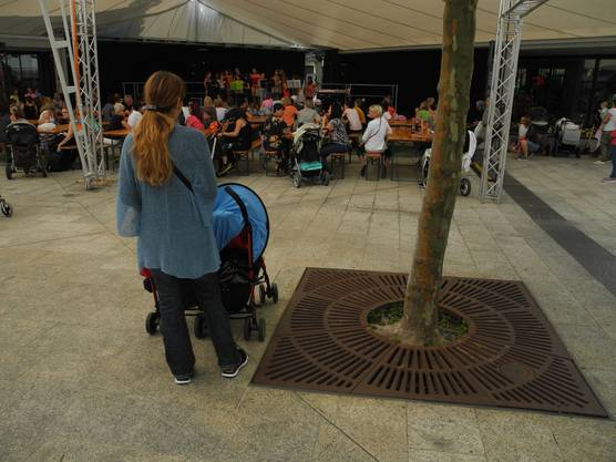 Kulturparty Geroldswil