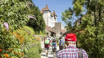 15 Etappen, 155,6 Kilometer, bis zu 25 prominente Gäste pro Wanderung: Das ist die diesjährige Jubiläumsausgabe des Leserwanderns.