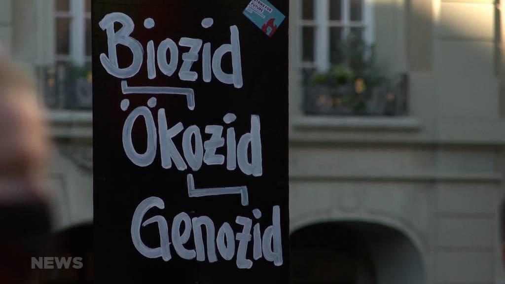 «Wir wollen konkrete Massnahmen»: Organisatoren fordern Kanton Bern nach Klima-Abstimmung