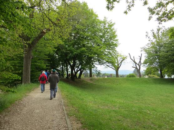 Die Wandergruppe in Richtung Therwil