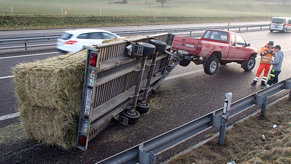 Der auf der Autobahn A1 bei Suhr AG umgekippte Anhänger führte in Fahrrichtung Bern zu Stau. Der junge Lenker blieb unverletzt.