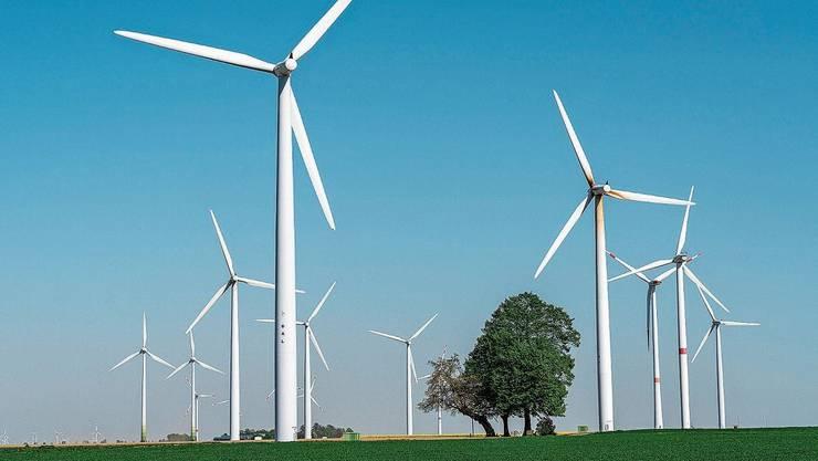Ein Windpark in der Nähe von Köln.