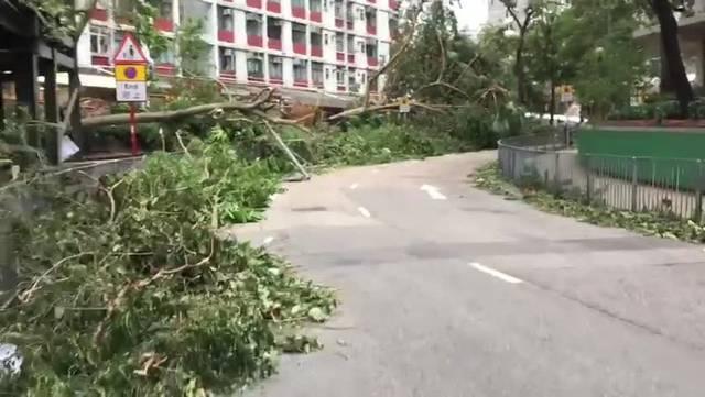Taifun «Mangkhut»: So sieht es in Hong Kong nach dem bisher schwersten Sturm des Jahres aus.