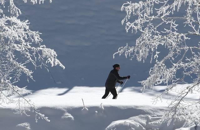 Sechs Kilometer lang soll die Loipe auf dem Weissenstein werden - sofern genug Schnee fällt.