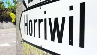 Ein 18-Jähriger wird beim Mai-Tannli stellen in Horriwil angeschossen. (Symbolbild)