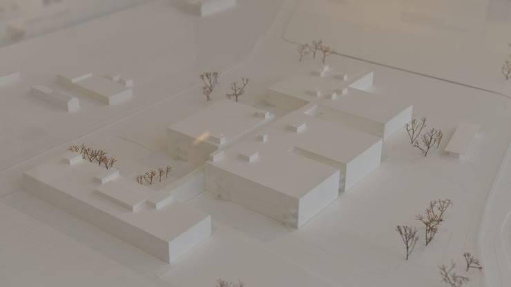 Modell für die Gebäude der CSL Behring AG in Lengnau
