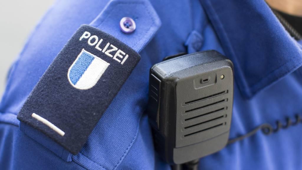 Die drei Diebe wurden an die Luzerner Kantonspolizei ausgeliefert. (Symbolbild)