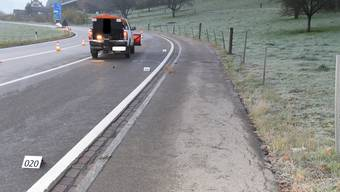 Der Unfall ereignete sich um 5.45 Uhr auf der Luzernerstrasse Richtung Hedingen.