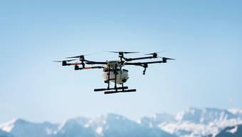 Das Geschäft mit Drohnen wächst. Hier besprüht eine Agrar-Drohne Rebberge in Rapperswil. (Bild: Christian Beutler/Keystone, 2. Mai 2017)