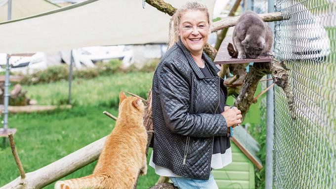 Für das Tierheim des Aargauischen Tierschutzvereins könnte es eng werden, sagt Präsidentin Astrid Becker.