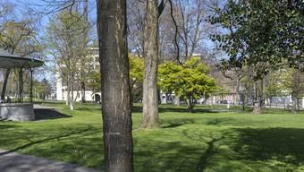 Der Raub ereignete sich in der Basler Elisabethenanlage vor dem De-Wette-Schulhaus.