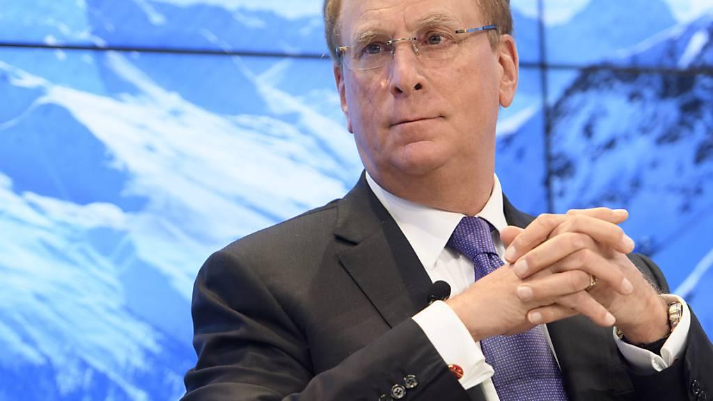 Blackrock-Chef mahnt Konzernbosse zu mehr Einsatz für Klimaschutz