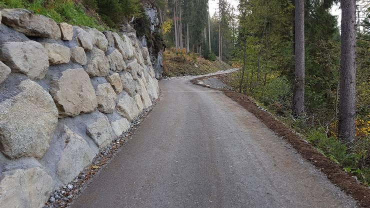 Walderschliessung an einem Beispiel in Klosters: Die Bündner Regierung unterstützt die Gemeinden mit 12 Millionen Franken.
