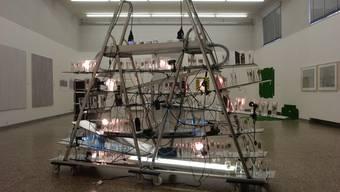 Jahresausstellung 2007 der Solothurner Kunstschaffenden im Kunstmuseum Solothurn Reto Emch