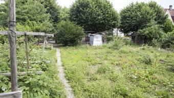 Hier sieht man einen Garten im Dilitschquartier in Solothurn. (Archivbild)