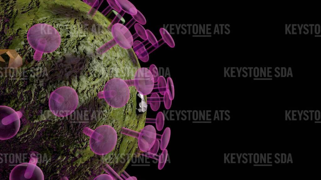 Bisher wurden dem Bundesamt für Gesundheit in der Schweiz und in Liechtenstein 88 Fälle von mutierten Coronaviren gemeldet.