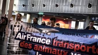 Basler Aktivisten demonstrieren schon seit Jahren gegen Air France. Seit Juni tun sie dies aber ohne Bewilligung der Behörden. (Archiv)