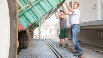 Arbeiten in der Knecht-Mühle während der Ernte: Das Unternehmen hat Geld in die Energieeffizienz gesteckt. (Archiv)