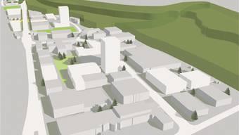 Gebiet Esp/Langacker in Dättwil als Zukunftsmodell.zvg