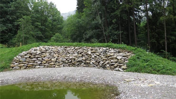 Das von Menschenhand geschaffene Ersatzbiotop im Fasiswald.