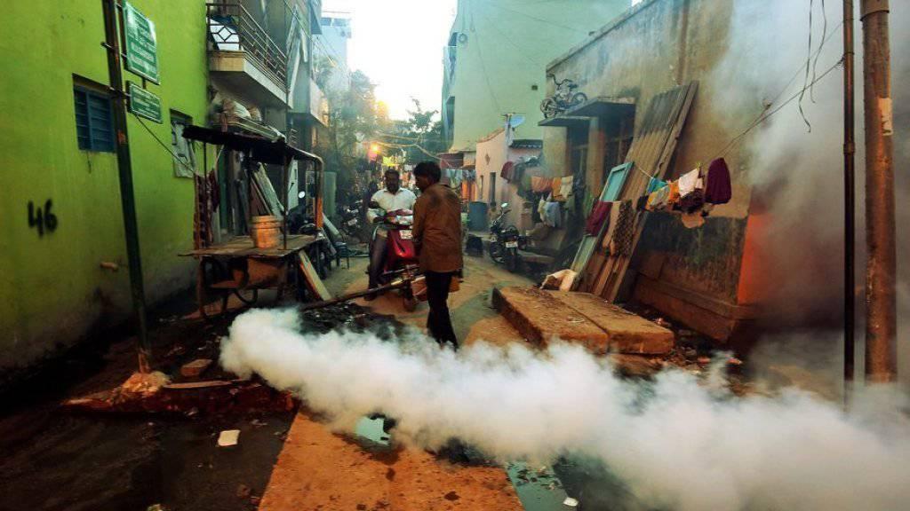 Ausräucherung als Mittel gegen von Malariaerregern infizierte Moskitos im indischen Bangalore