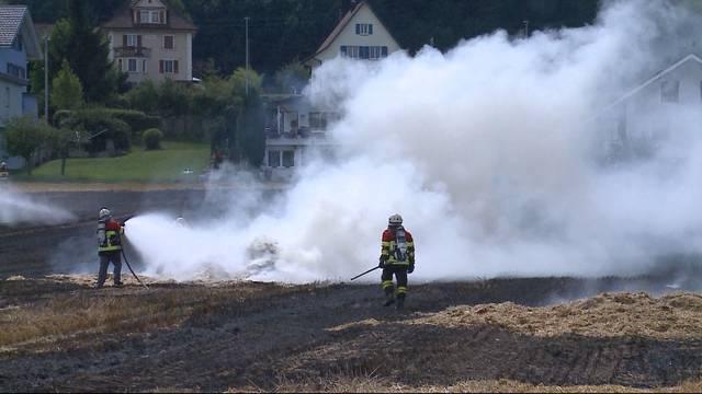 2-Hektar-Feld komplett ausgebrannt