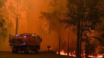 Die Feuerwehr im Einsatz 50km südwestlich von Sydney. (Archiv)