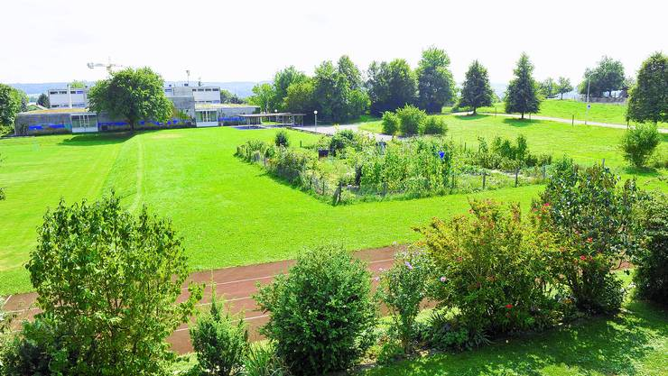 Turnen anstatt gärtnen? Wo heute noch vier kleine Familiengärten stehen, käme eine neue Dreifach-Turnhalle zu stehen. Urs Lindt