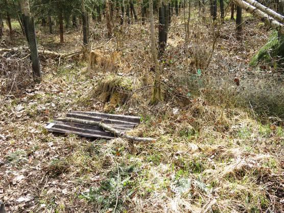 Mit diesen Wellplatten werden die Reptilienarten untersucht, die im Biberrevier leben.
