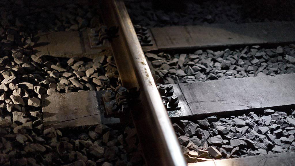 Wegen eines Gleisschadens kam es auf der Bahnstrecke zwischen Zürich HB und Thalwil am Freitag zu Einschränkungen. (Symbolbild)