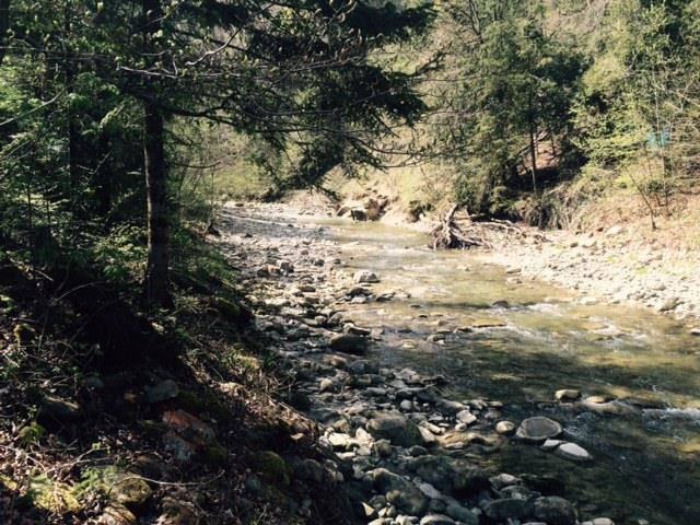 FM 1 Unterwegs Wasserweg Goldach