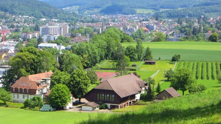 Liestal am letzten Tag (31.5.2014) im Mai, doch schön unsere Kantonshauptstadt