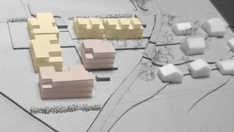 """Das Bauland im Winznauer Gebiet """"Büelacker"""" soll umgezont werden. Geplant ist eine Siedlung mit Reihen- und Doppeleinfamilienhäusern."""