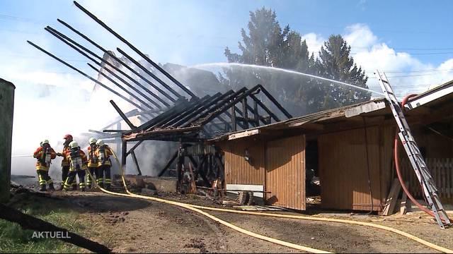 Grossbrand in Zeiningen: Bauernhof brennt lichterloh