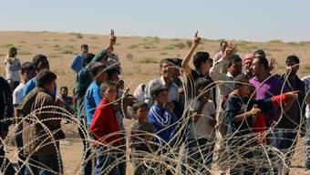 Zehntausende syrische Kurden flüchten vor dem IS in die Türkei