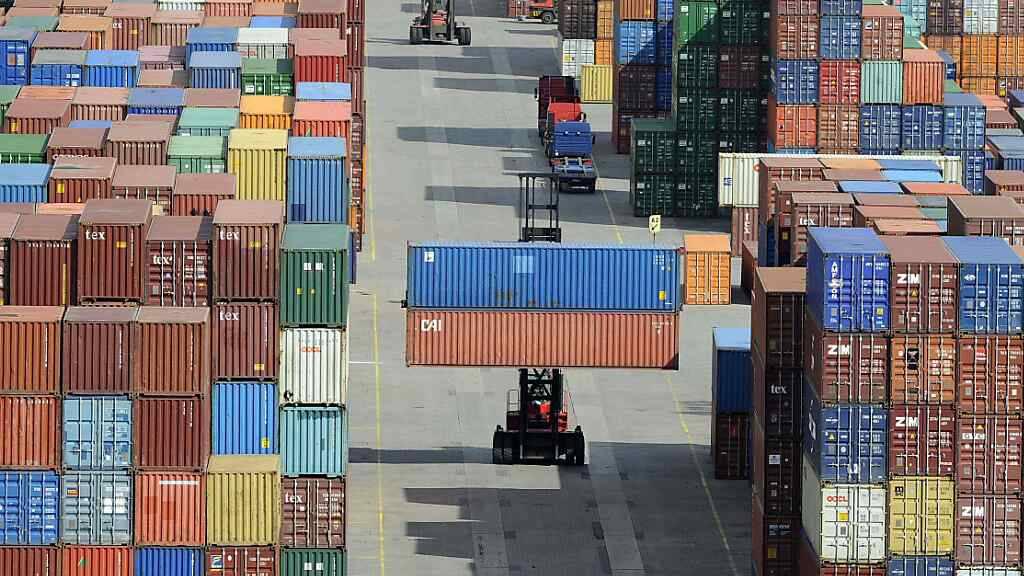 Die Konjunktur in Deutschland dürfte sich in den nächsten Monaten laut Ifo-Umfrage wieder etwas abkühlen. Im Bld: Verladeterminal am Hamburger Hafen. (Archivbild)