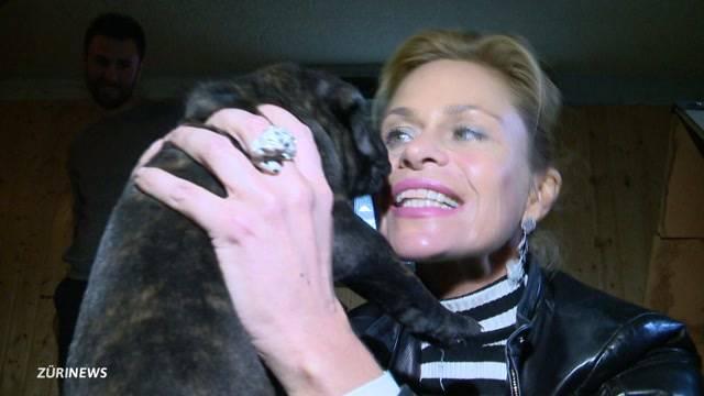 Bellers neuer Wachhund