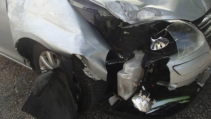 Das Fahrzeug kam von der Fahrbahn ab und durchbrach einen Wildschutzzaun.