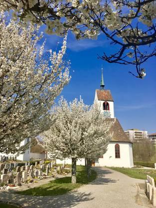 Bluescht in Oberdorf