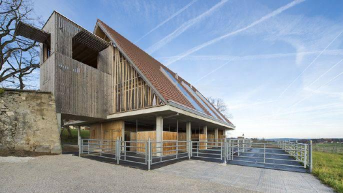 Früher Scheune, heute Neubau mit Stallungen: Bei diesem Familienhaus in Beinwil haben auch die Pferde Platz.