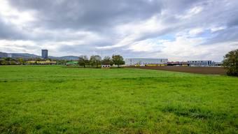 Die Ebene, wo Salina Raurica geplant ist, wird derzeit landwirtschaftlich genutzt. Manche möchten, dass sie grün bleibt.