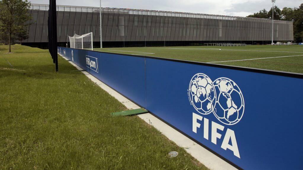 Die FIFA lädt zum Online-Gipfel zum Thema WM-Reform