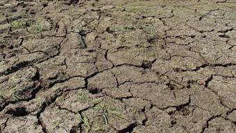 Dürre verursacht Hitze