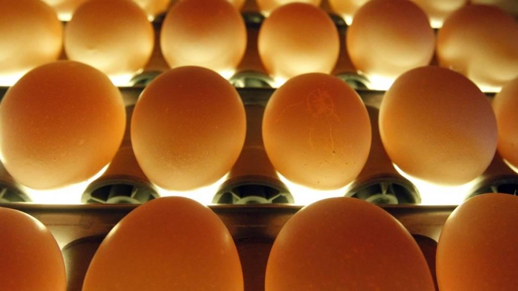 200 Eier und 11 Kilo Geflügelfleisch pro Kopf und Jahr