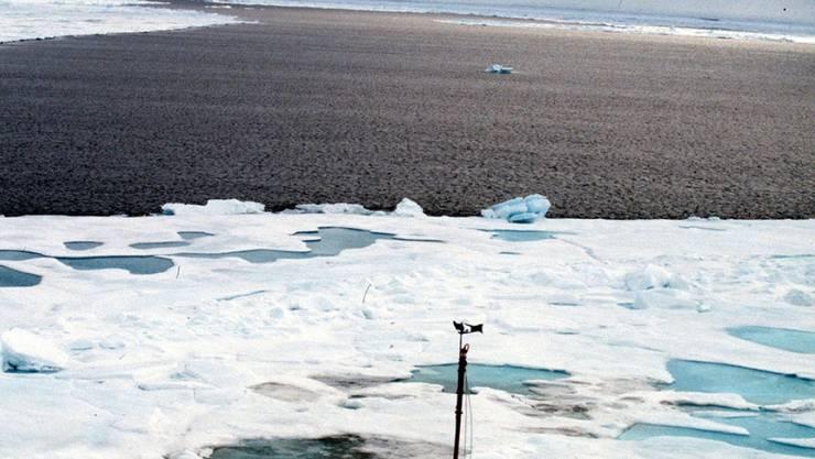 Am Nordpol war es in den vergangenen vier Wochen im Schnitt neun bis zwölf Grad wärmer als normal. (Archivbild)