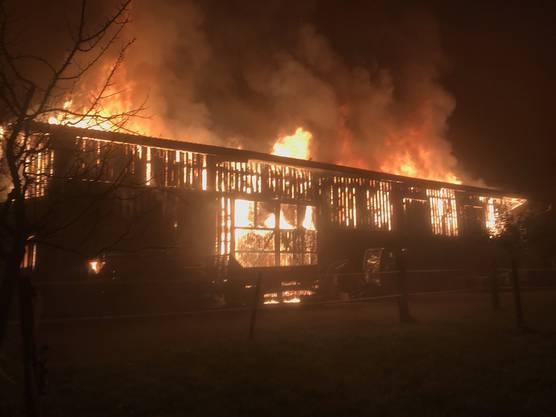 In einer Halle in Jonen brach ein Brand aus. Dieser zerstörte das Gebäude. Verletzt wurde niemand.
