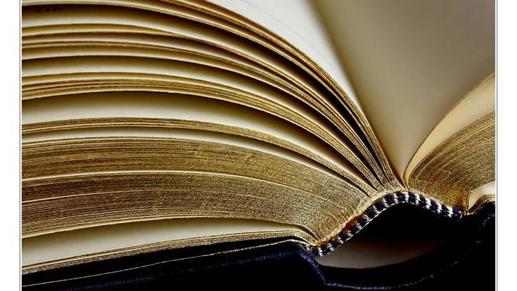 Die Inszenierung eines Verstosses: Der eine Insasse leiht dem anderen ein Buch aus, um sich darauf selbst anzuzeigen.