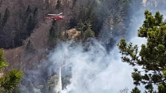 Der Waldbrand in Günsberg SO wurde Mitte April mit einem Helikopter bekämpft. (Archiv)
