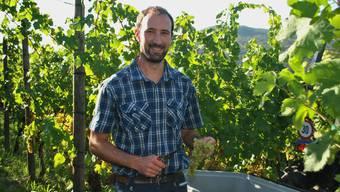 Winzer Daniel Jeck ist mit der Ernte zufrieden.