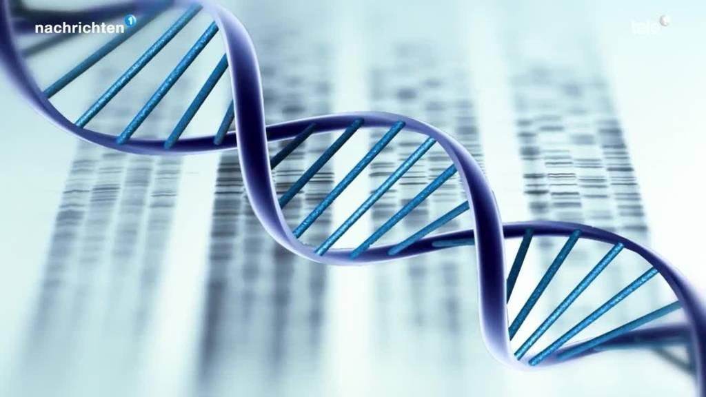 Kann ein DNA-Gesetz den Fall Emmen weiterbringen?